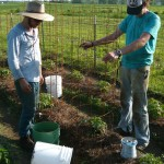 Jordan Walker and Lucas Neher work at Big Hill Farm (Photo Submitted)