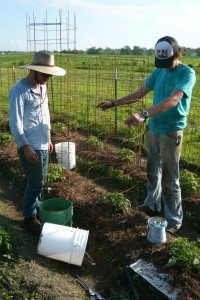 Jordan Walker and Lucas Neher work at the Big Hill Farm. (Photo Submitted)